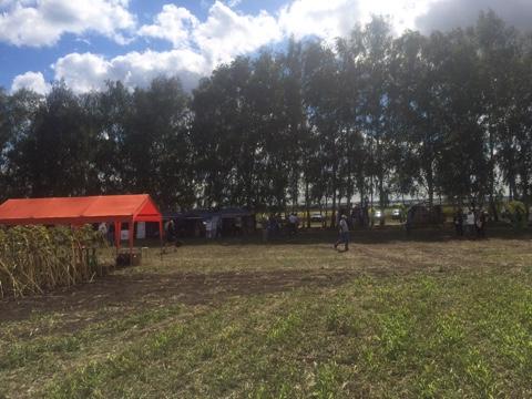 9 сентября состоялся Региональный день поля кукурузы, подсолнечника, сорго и сои в Воронежской области