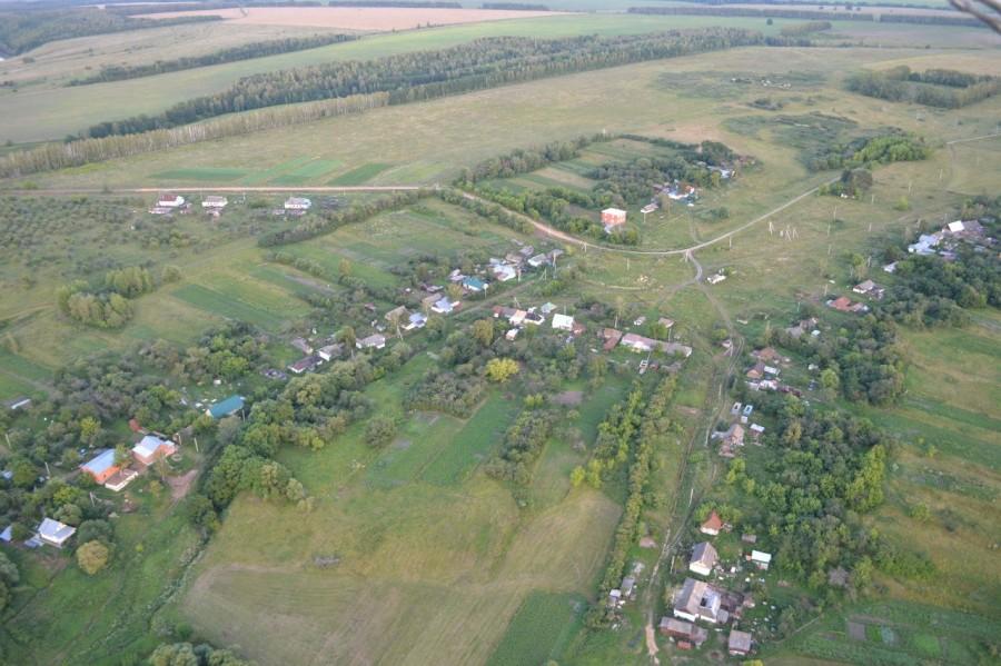 элеватор давыдовский воронежская область
